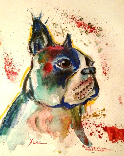 WATER COLOR BOSTON BULL